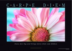 CARPE DIEM Motivationsposter