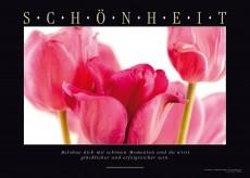 SCHÖNHEIT - Blumenbild