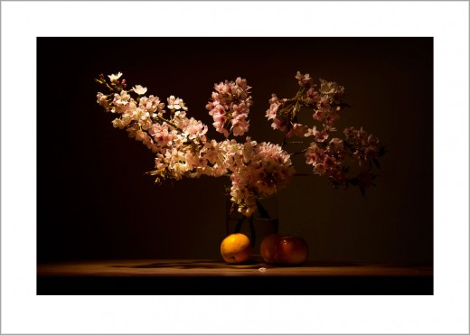 Apfelblüte (Nummer1) Blumenstilleben Kunstdruck Wandbild auf Fine Art Print Papier