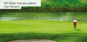 Die Farbe Grün in unseren Kunstdrucken für Motivation und Bussines