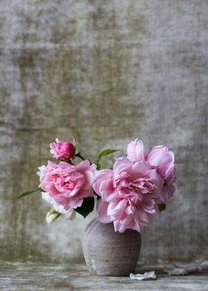 Rosen Blumenstilleben Kunstdruck Wandbild auf Fine Art Print Papier